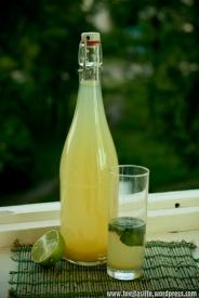 Rabarberu un piparmētru limonāde