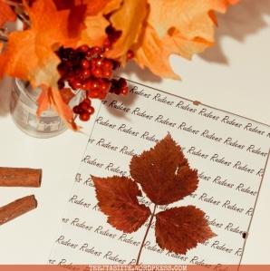 Tejtasites rudens diy dekors2