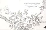 Agija Staka - Nomoda sapņi