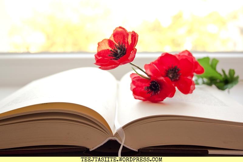 Grāmatu blogu stafete - atmiņas par bibliotēkām