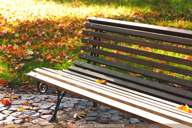 Kā izbaudīt oktobri? | Foto: Tējtasīte