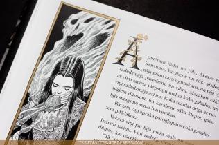 Vārdotāja un vārpstiņa (The Sleeper and the Spindle) ilustrācija