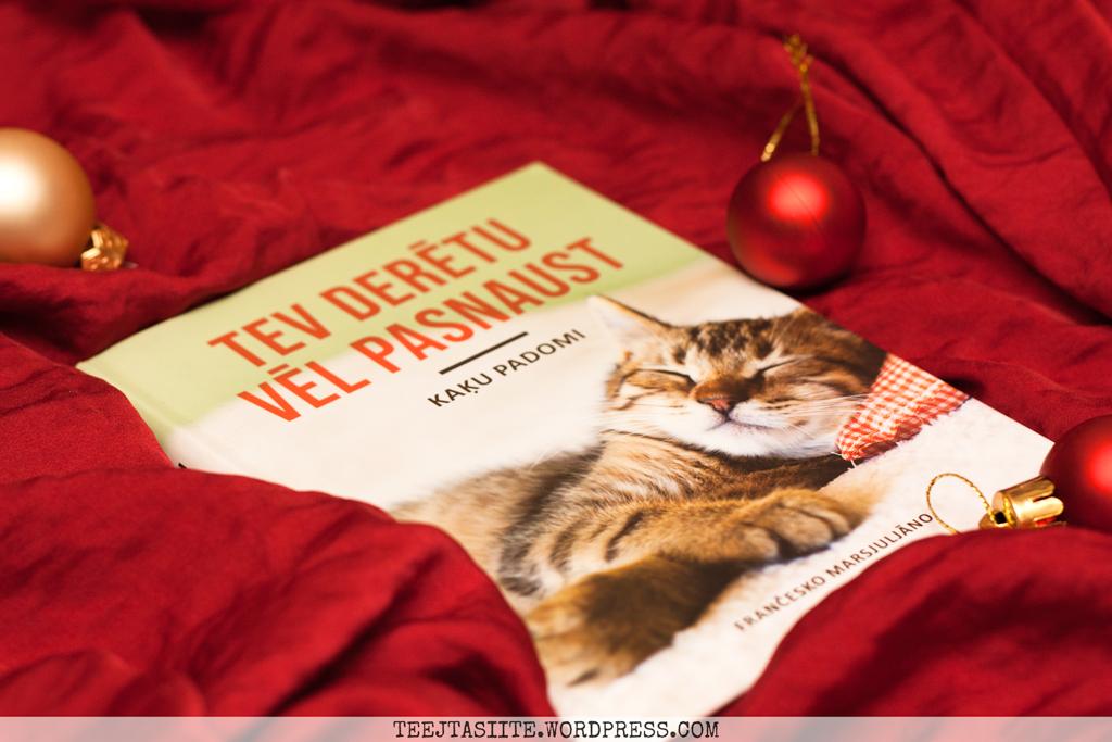 Frančesko Marsjuljāno. Tev derētu vēl pasnaust. Kaķu padomi.
